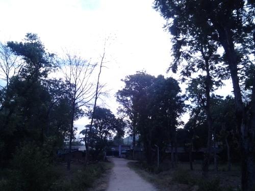 Photo0292