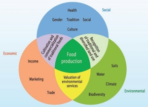 Agriculture-interconnectedness